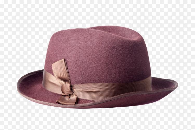 Female felt hat isolated on transparent background PNG