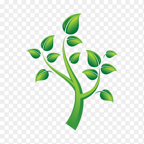 Green tree logo design natural and abstract leaf on transparent background PNG