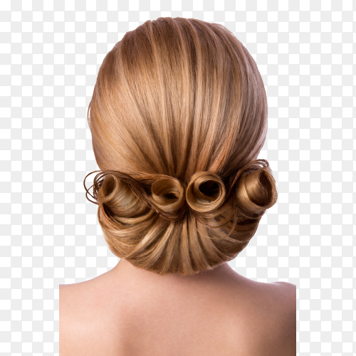 Romantic formal hairstyle on brown hair, back view on transparent background PNG