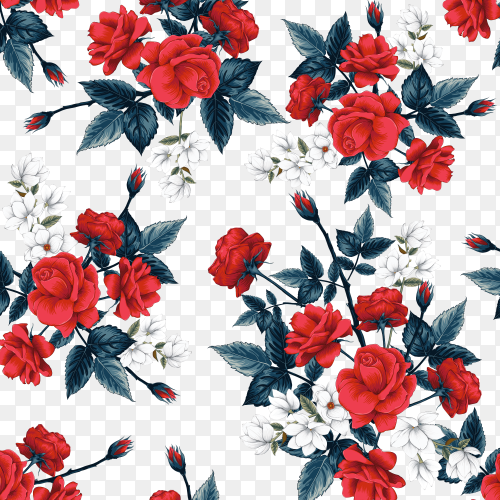 Seamless pattern floral beautiful red Rose on transparent background PNG