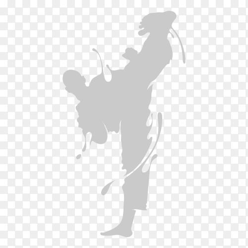 Taekwondo kick splash on transparent background PNG