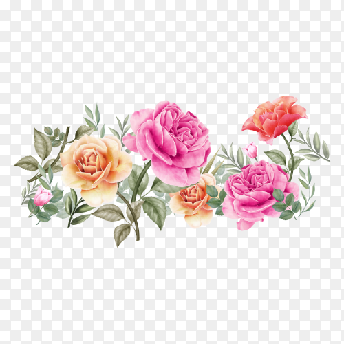 Watercolor beautiful flowers on transparent background PNG