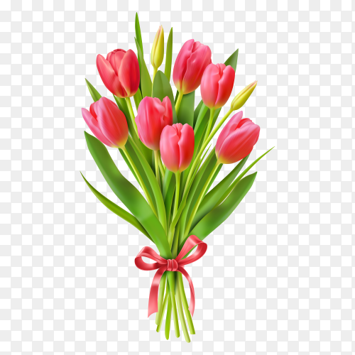 Bouquet of tulips on transparent background PNG