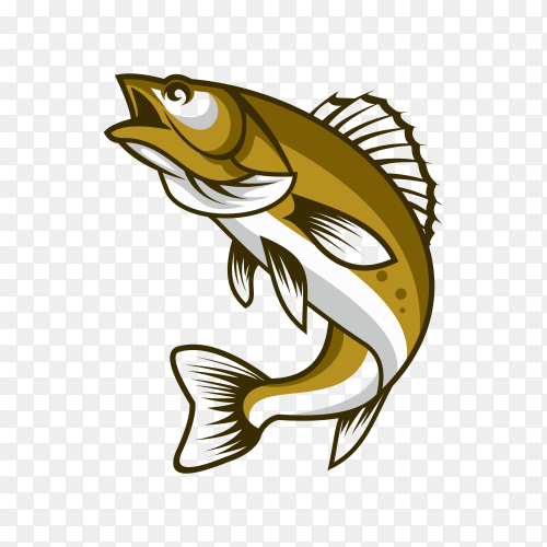 Hand drawn cartoon fish illustration on transparent background PNG