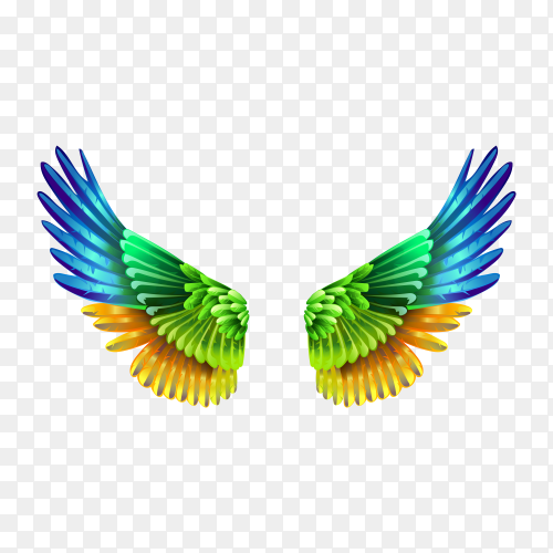 Colorful wings on transparent background PNG