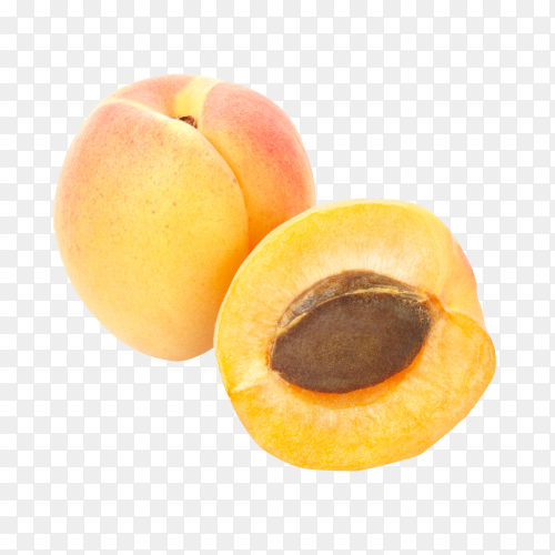Fresh yellow apricots isolated on transparent background PNG