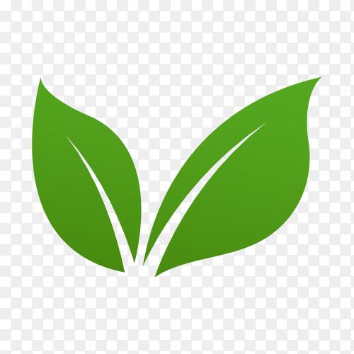 Green leaves logo on transparent background PNG