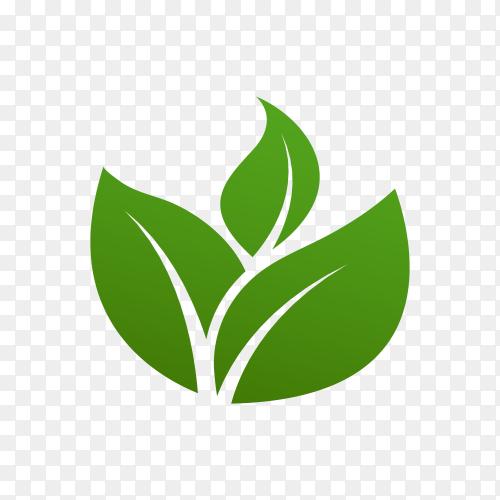 Green leaves logo symbol on transparent background PNG