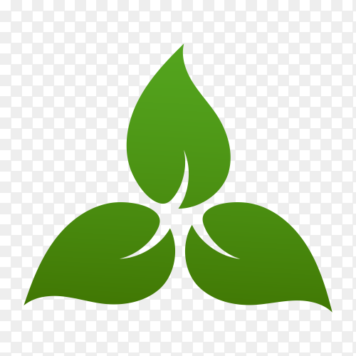 Hand drawn green leaves logo on transparent background PNG