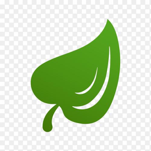 Illustration of green leaves logo on transparent background PNG