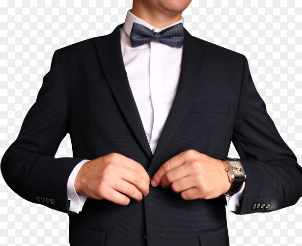 Sharp dressed man wearing jacket and bow tie on transparent background PNG
