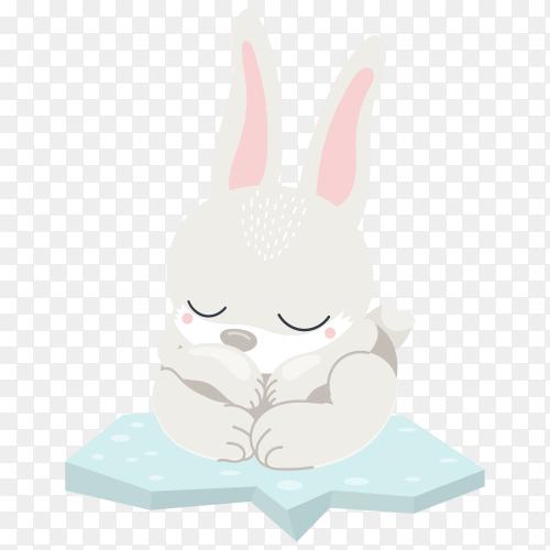 Cartoon cute rabbit on transparent background PNG