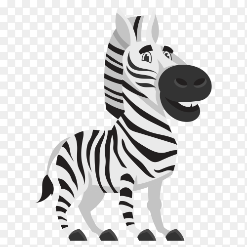 Cut zebra illustration on transparent background PNG