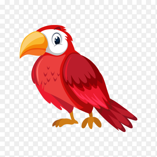 Cute Parrot on transparent background PNG
