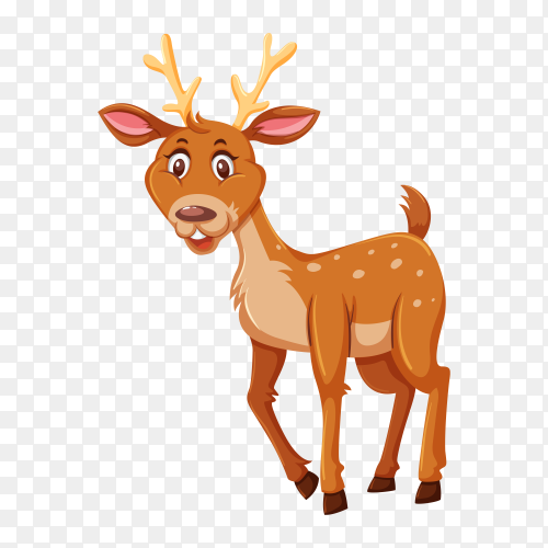 Cute deer on transparent background PNG
