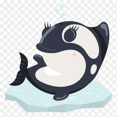 Cute kawaii arctic polar baby orca on ice as on transparent background PNG