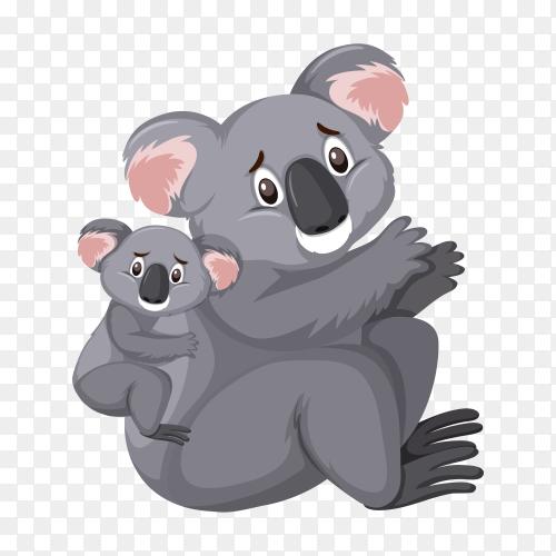 Cute koalas on transparent background PNG
