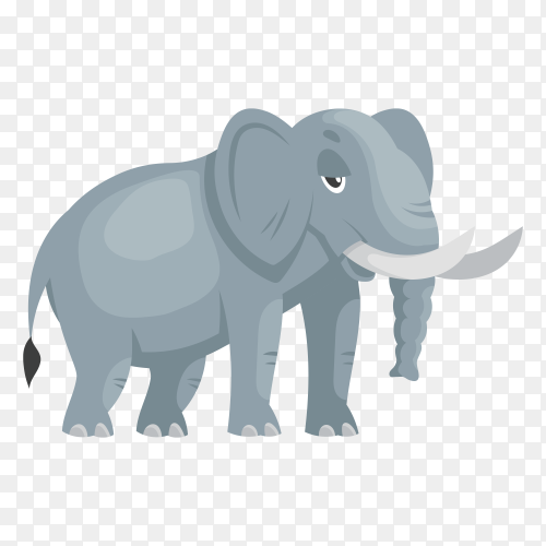 Elephant isolated on transparent background PNG