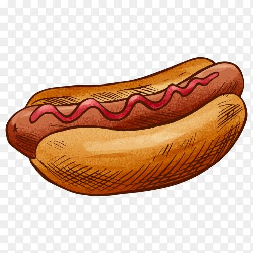 Hot dog sandwich on transparent background PNG