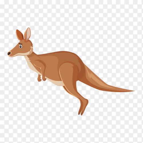 Sad looking kangaroo hopping on transparent background PNG