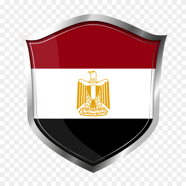Egypt flag for bodies and institutions PNG