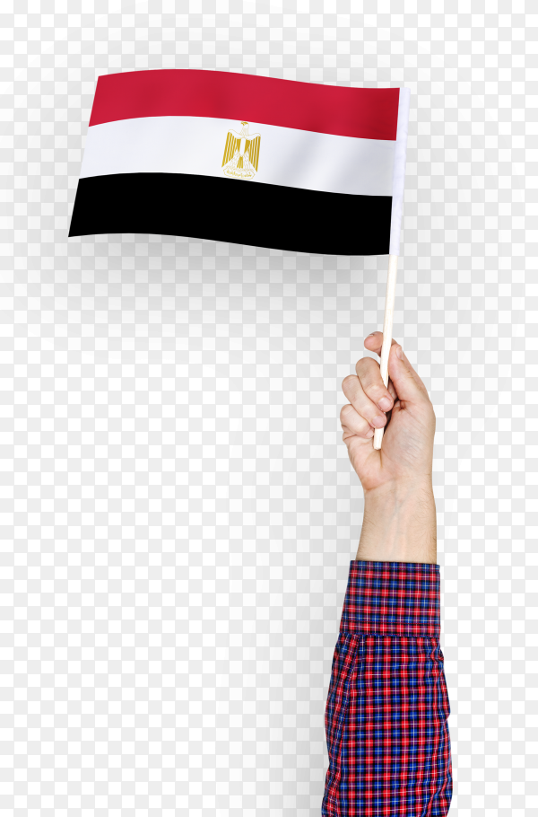 Person waving the flag of arab republic of Egypt PNG