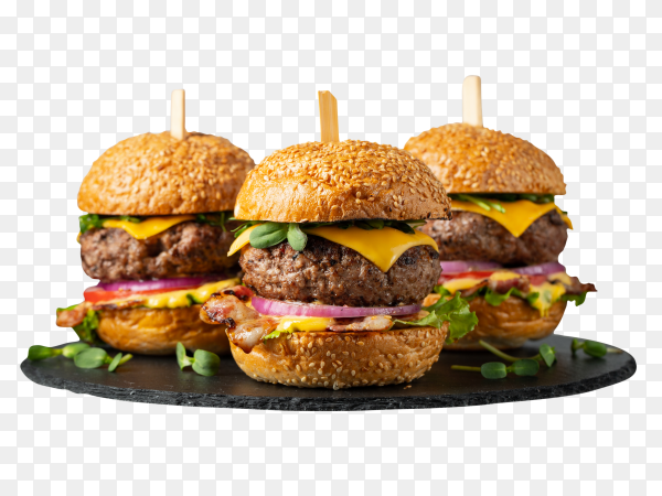 Set homemade delicious burgers PNG