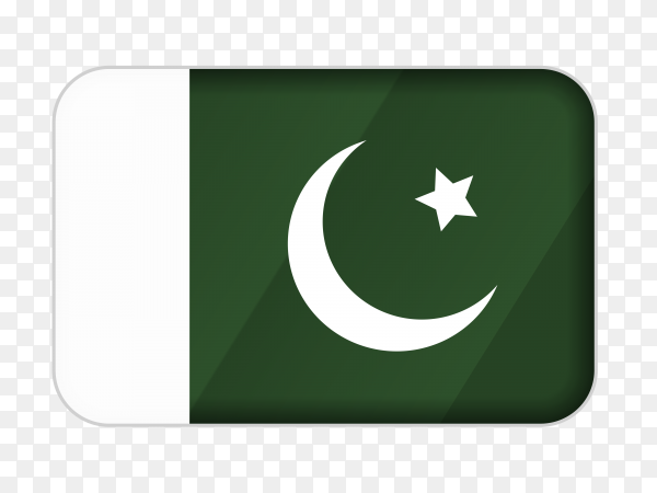 Pakistan flag icon on transparent background PNG