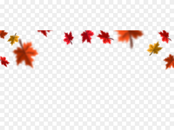 Autumn falling leaves on transparent PNG