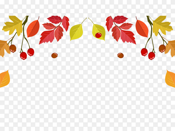 Autumn with beautiful leaves vector PNG