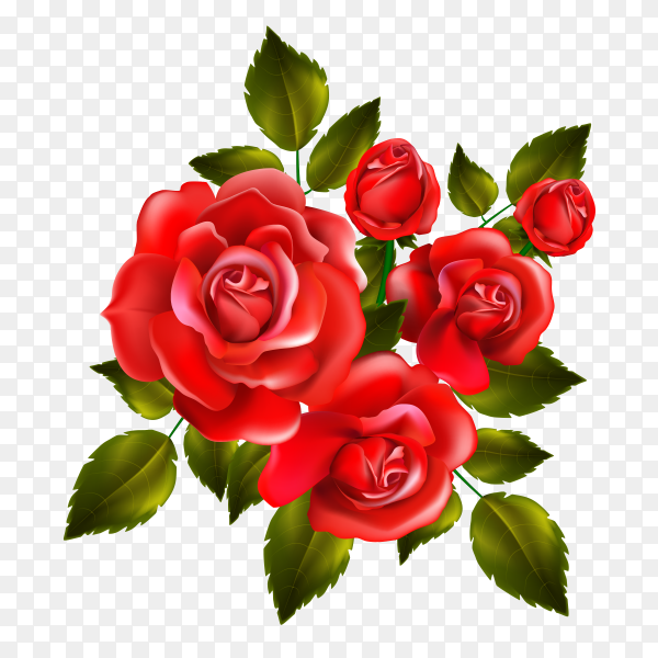 Beautiful frame with red roses leaves floral arrangement vector PNG
