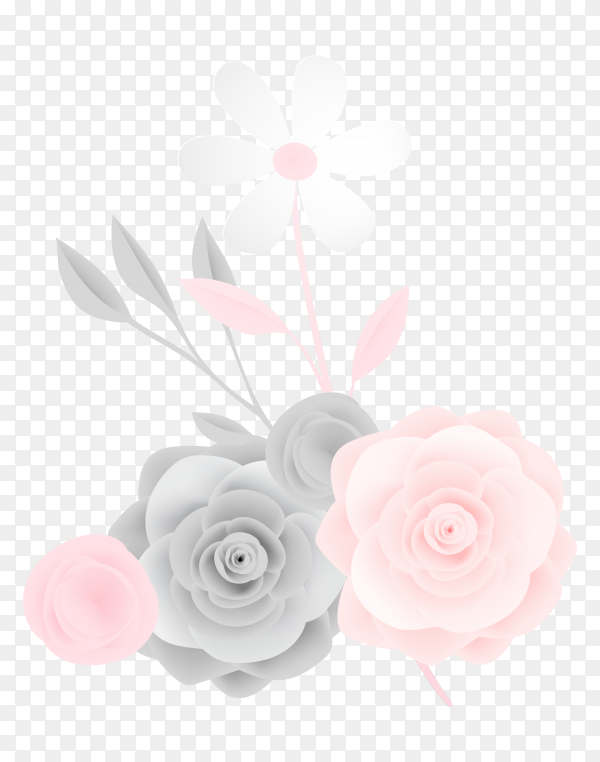 Beautiful pink and gray rose on transparent PNG