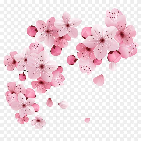 Flying Pink roses on transparent PNG