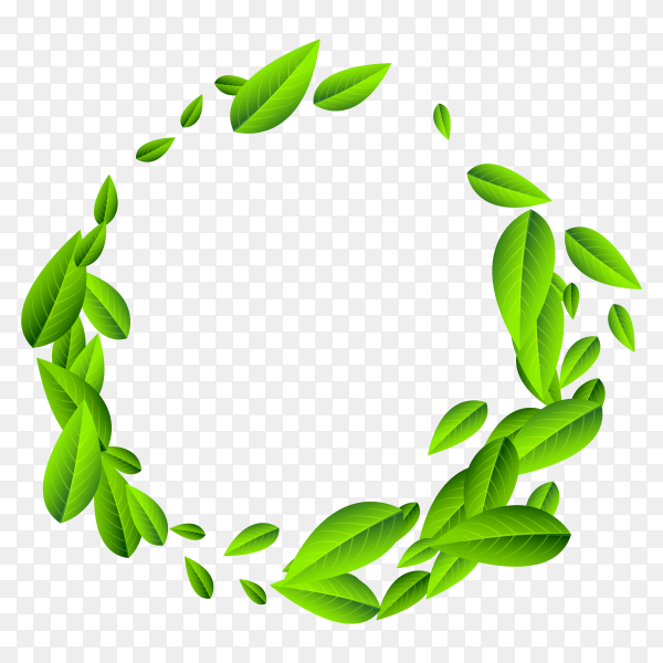 Flying green leaves frame on transparent PNG