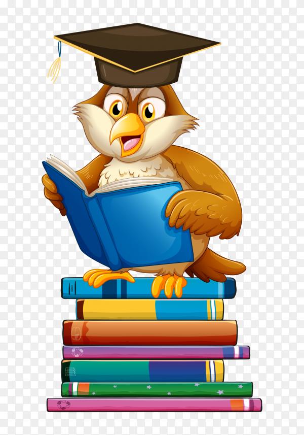 Graduated Bird reading book Vector PNG