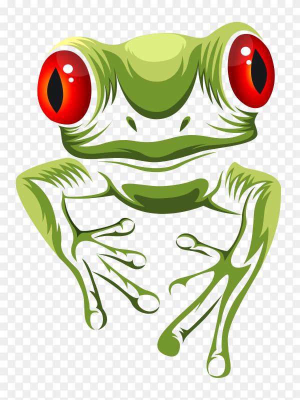 Green frog on transparent background PNG