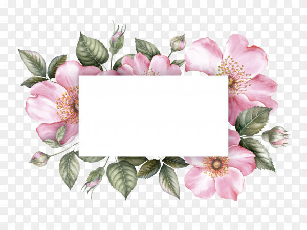 Invitation card on flowers frame vector PNG