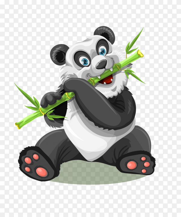 Panda eating bamboo on transparent background PNG