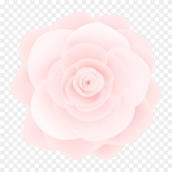 Pink watercolor coral flower vector PNG
