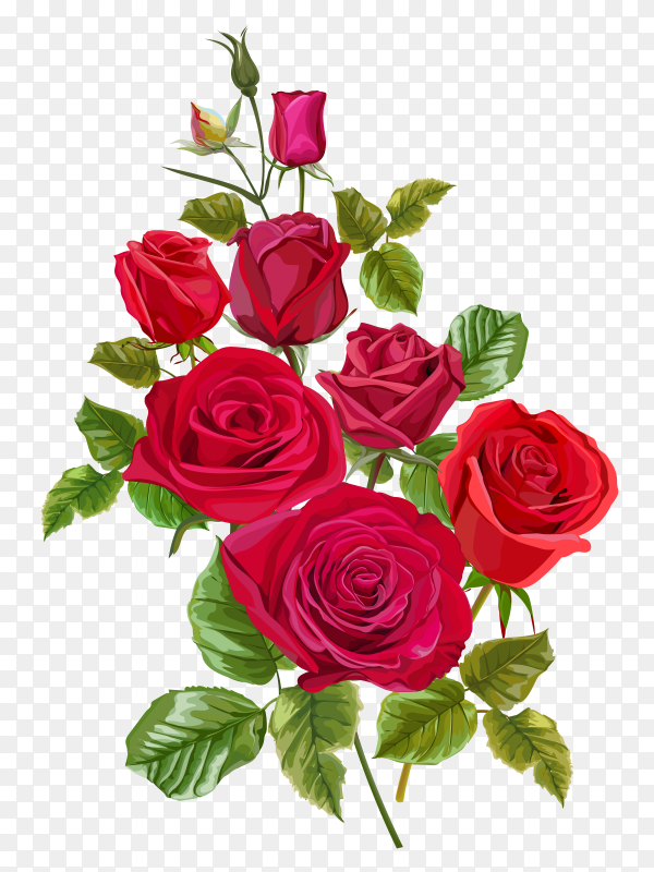 Red rose flower greeting cards invitations wedding vector PNG