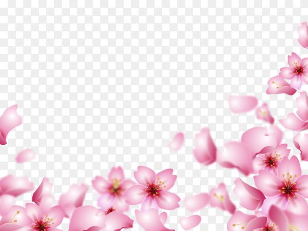 Roses shaped frame on transparent background PNG