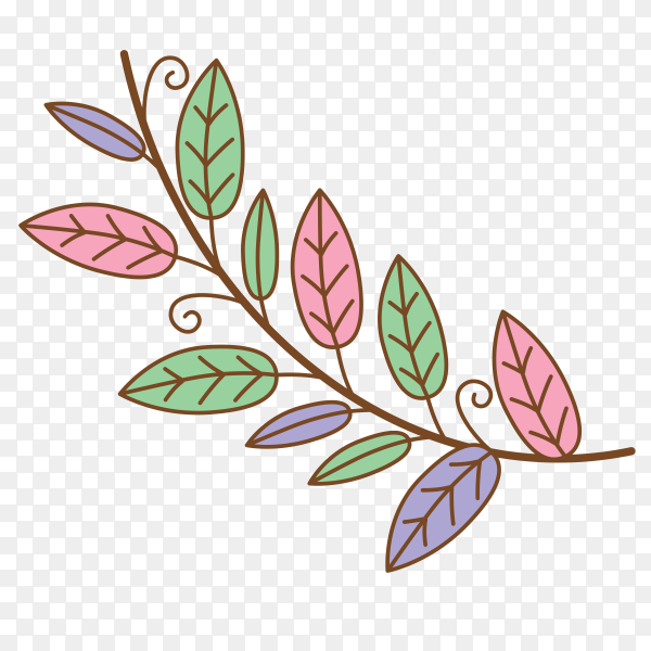 Colorful floral design Clipart PNG