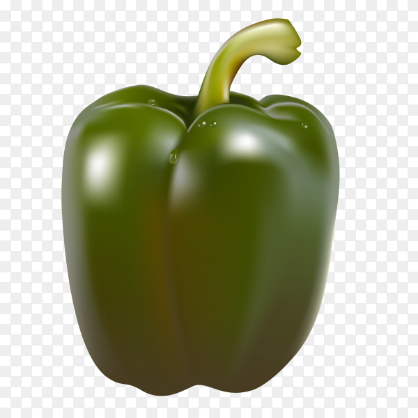Green pepper on transparent background PNG