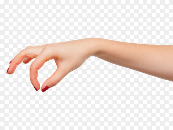 Hand pose like picking something on transparent background PNG