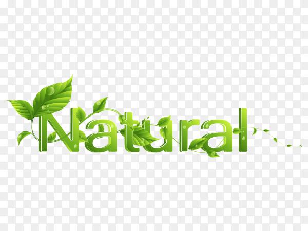 Natural eco word logo on transparent background PNG