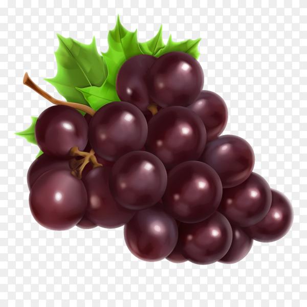 Red Grape Premium Vector PNG