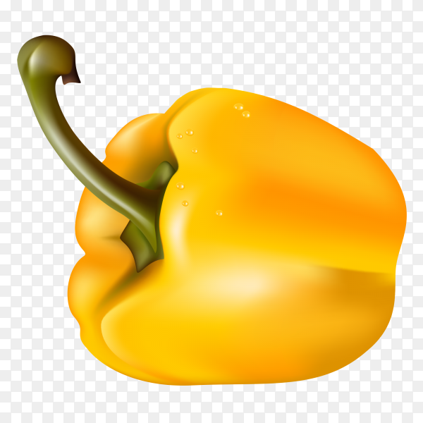 Yellow Pepper 3D Clipart PNG