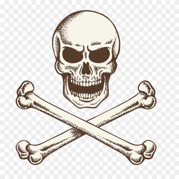 Crossed bones skull icon on transparent background PNG