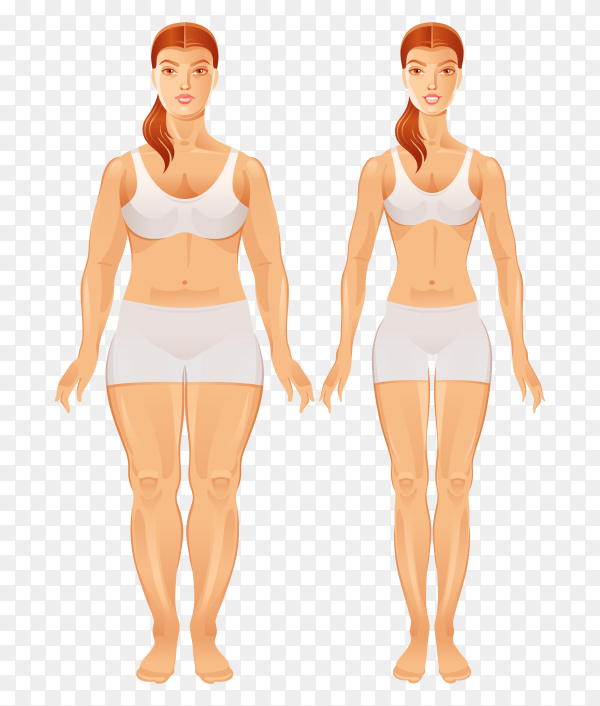Fat and slim woman figures  on transparent  PNG