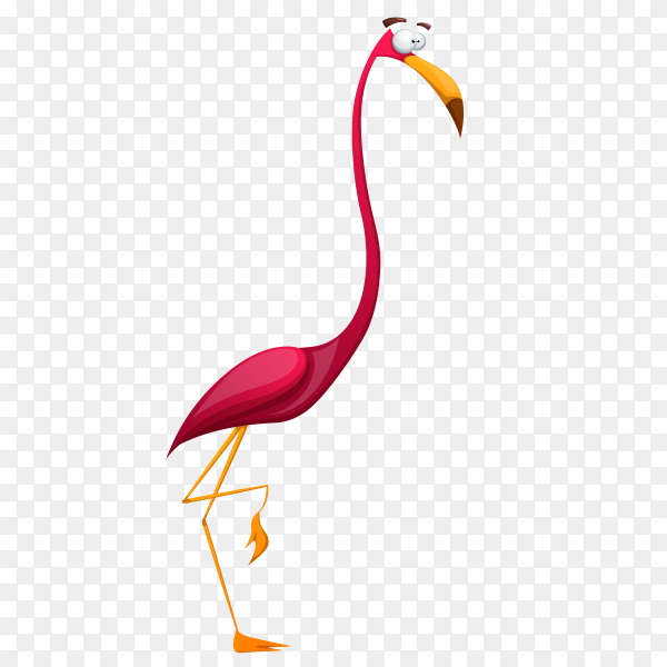 Flamingo Cartoon Character on transparent background PNG